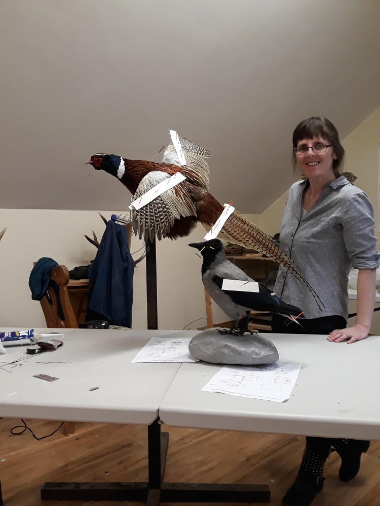 training taxidermy course jan.2018 263
